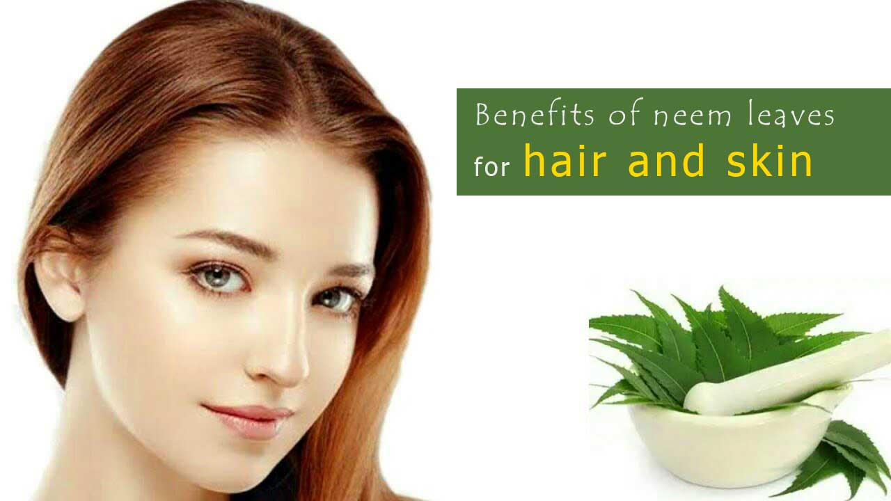 Benefits of neem leaves for hair and skin