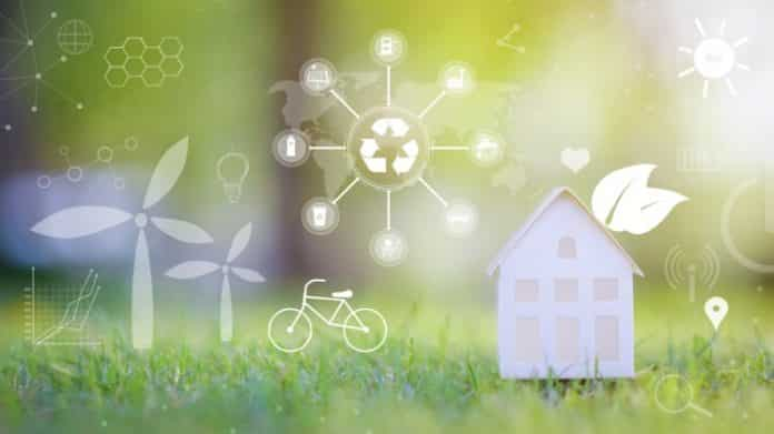 Importance of Environmental Management in Today's Society